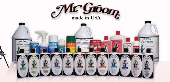 Mr Groom